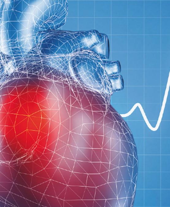 III Máster online de Ecocardiografía en Emergencias Médicas, Anestesia, Reanimación y Cuidados Críticos (Eco transtorácico y transesofágico)