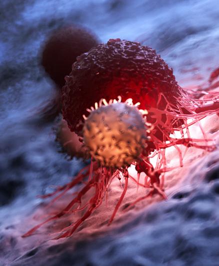 I Curso Nuevos retos para el asesoramiento genético en Oncología