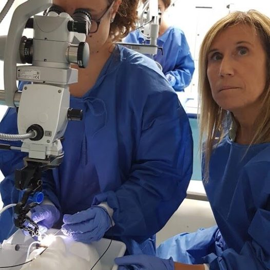 Curso Iniciación a la Cirugía Vitreo-Retina – 1ª Edición
