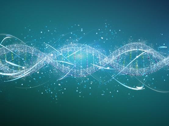 I Curso ONCO-ID MadrID: Nuevos biomarcadores para una Oncología de Precisión
